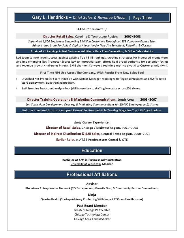 Award-Winning Chief Revenue Officer Sample Resume, CRO Resume ...