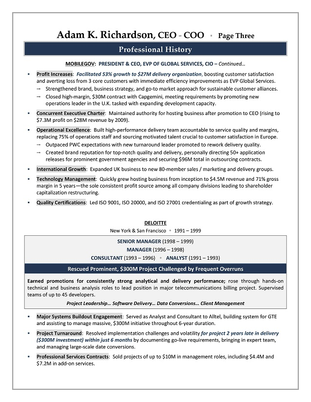ceo cv founder and ceo resume samples chief executive officer