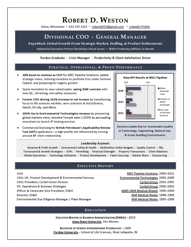 Best Executive Resume Writer   Sample Resume COO   GM