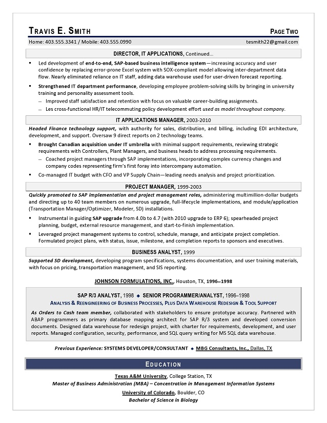 Sample VP IT Resume  Vp Resume