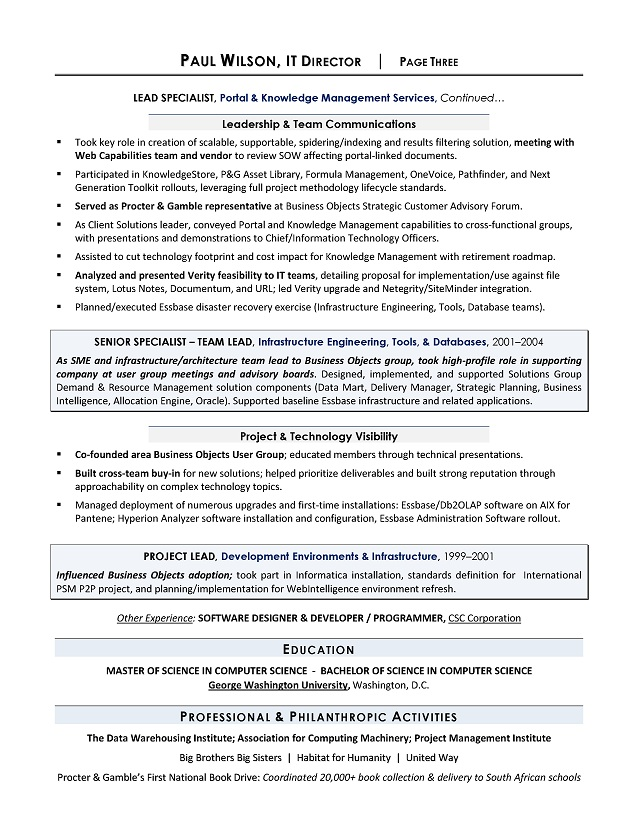 it director resume example it resume writer