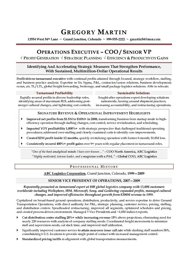 VP Operations & COO Sample Resume; Executive resume writer ...