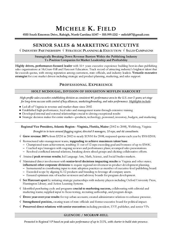 regional vp sales sample resume executive resume writing sales