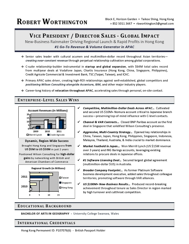 Vice President Sales Sample Resume Vp Sales Resume Example