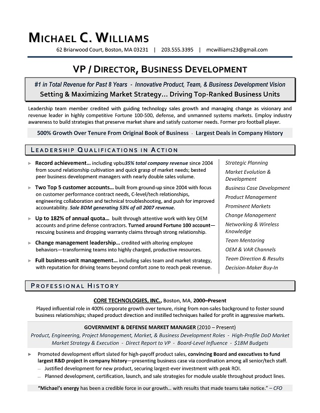 vp business development sample resume